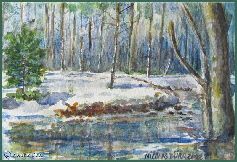 Randonnées graphiques hivernales dans le Haut-Doubs en hiver,2012