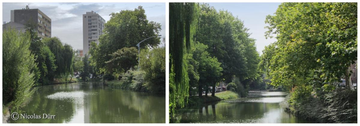 Le Canal du Midi (2/33), de Toulouse à Carcassonne (2012) (2/9) : la ville rose et lesenvirons
