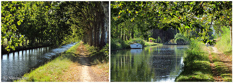 Le Canal du Midi (14/30), de Carcassonne à la jonction (2012) (5/7) : de l'écluse d'Homps à l'écluse d'Argens, au début du GrandBief