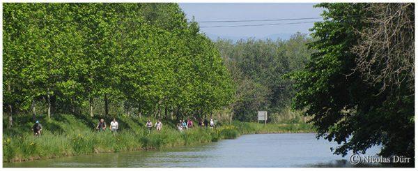 Le Canal du Midi (25/33), de la jonction à Béziers (2012) (4/5) : de Capestang àColombiers